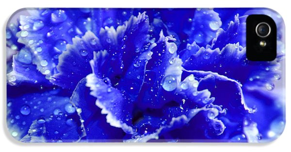 Rainy Day Blues IPhone 5 Case by Krissy Katsimbras