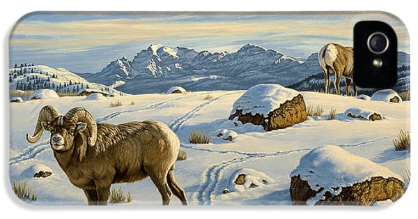 Rams Down From Junction Butte IPhone 5 Case by Paul Krapf