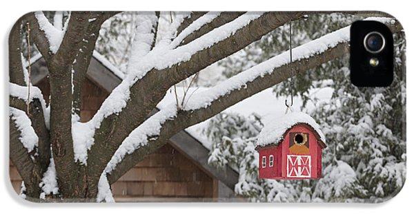 Red Barn Birdhouse On Tree In Winter IPhone 5 Case by Elena Elisseeva