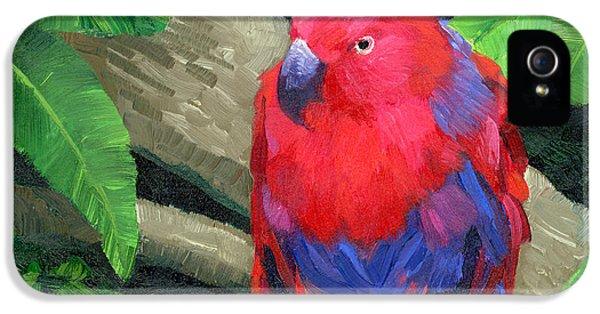Red Bird IPhone 5 / 5s Case by Alice Leggett