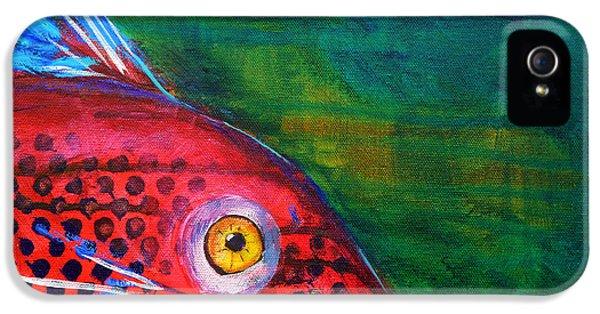 Catfish iPhone 5 Case - Red Fish by Nancy Merkle