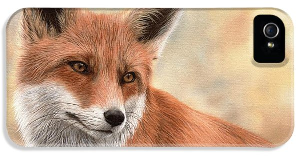 Red Fox Painting IPhone 5 Case by Rachel Stribbling