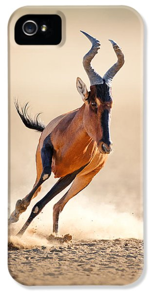 Red Hartebeest Running IPhone 5 / 5s Case by Johan Swanepoel