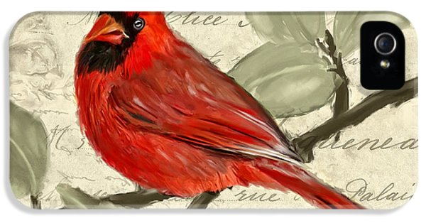 Red Melody IPhone 5 Case by Lourry Legarde