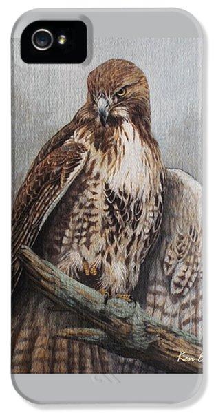 Red Tail Hawk IPhone 5 Case by Ken Everett