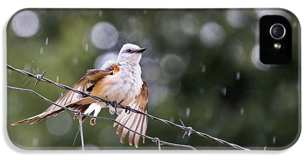 Revelling In The Rain IPhone 5 / 5s Case by Annette Hugen
