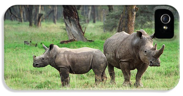 Rhino Family IPhone 5 Case by Sebastian Musial