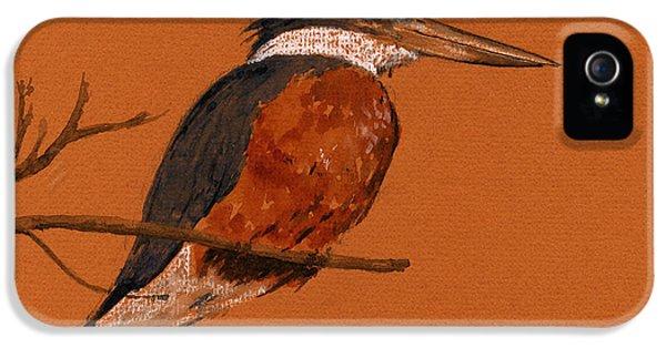 Ringed Kingfisher Bird IPhone 5 Case by Juan  Bosco