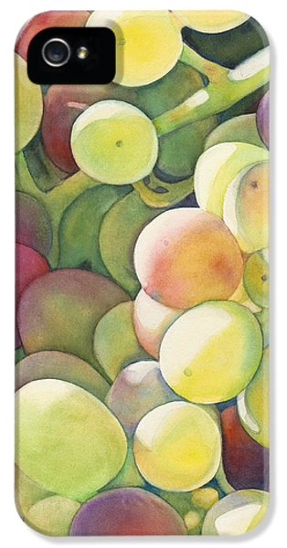 Ripening IPhone 5 Case by Sandy Haight