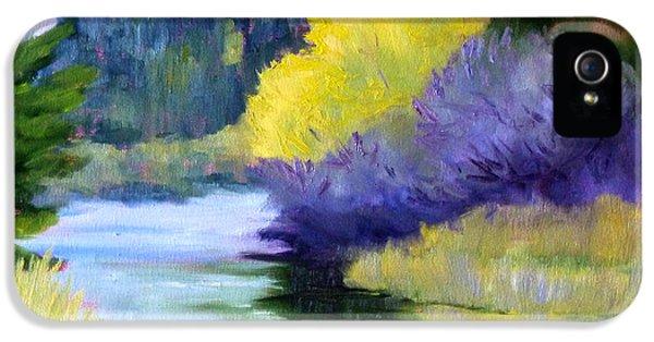 River Color IPhone 5 Case