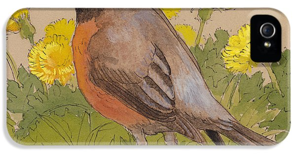Robin In The Dandelions IPhone 5 Case by Tracie Thompson