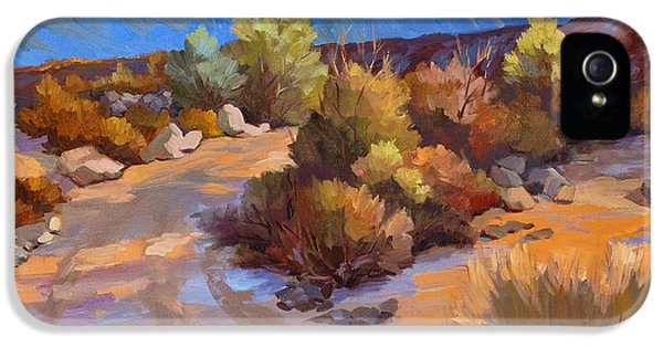 Rock Cairn At La Quinta Cove IPhone 5 Case