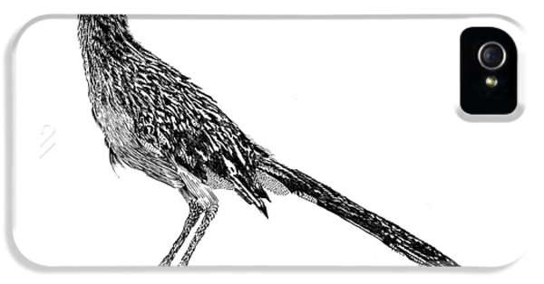 Roadrunner iPhone 5 Case - Rockin Roadrunner by Jack Pumphrey