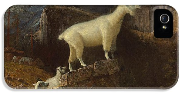 Rocky Mountain Goats IPhone 5 / 5s Case by Albert Bierstadt