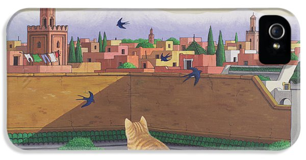 Rooftops In Marrakesh IPhone 5 Case by Larry Smart