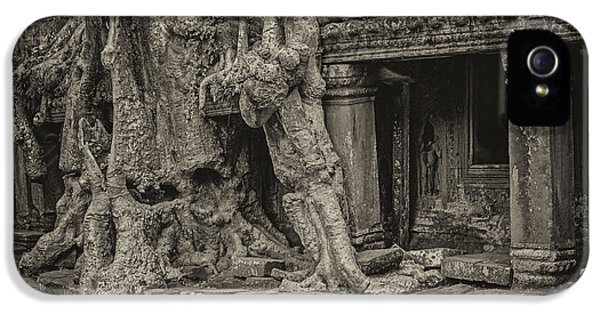 Roots In Ruins 7, Ta Prohm, 2014 IPhone 5 Case by Hitendra SINKAR