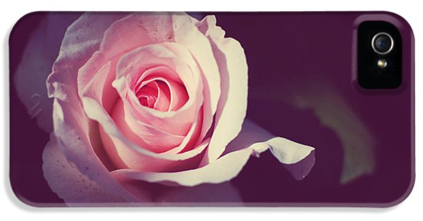 Rose Light IPhone 5 / 5s Case by Lupen  Grainne