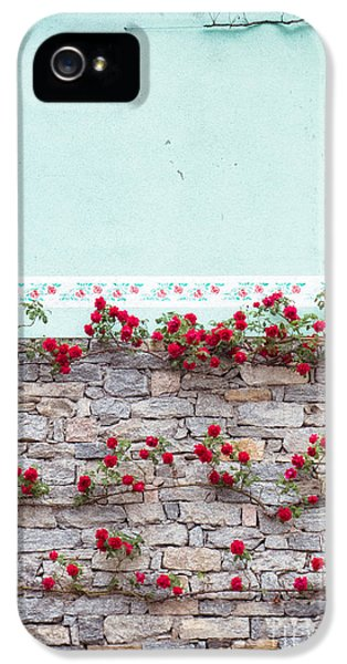 Roses On A Wall IPhone 5 Case by Silvia Ganora