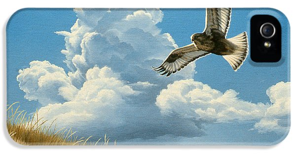 Hawk iPhone 5 Case - Rough-legged Hawk by Paul Krapf