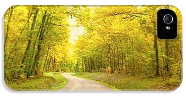 IPhone 5 Case featuring the photograph Route Dans La Foret Jaune by Marc Philippe Joly