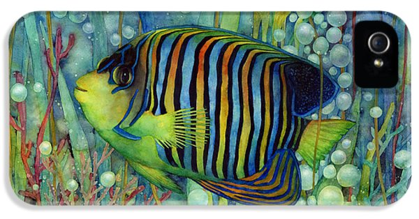 Royal Angelfish IPhone 5 Case