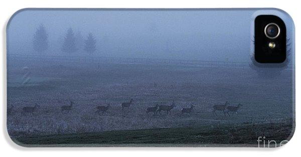 Running In The Mist IPhone 5 Case