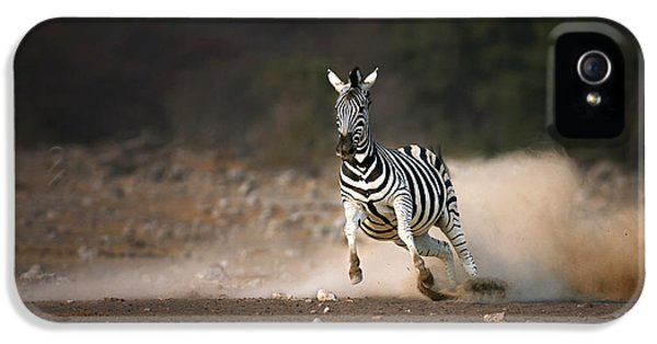 Running Zebra IPhone 5 Case by Johan Swanepoel