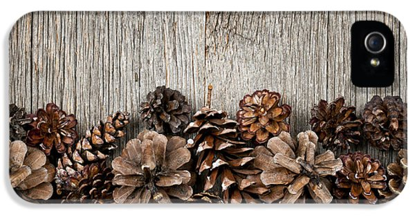 Rustic Wood With Pine Cones IPhone 5 Case by Elena Elisseeva