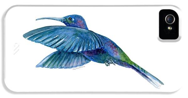 Sabrewing Hummingbird IPhone 5 Case by Amy Kirkpatrick