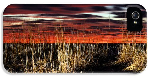 Sand Dune Sunrise IPhone 5 Case by JC Findley