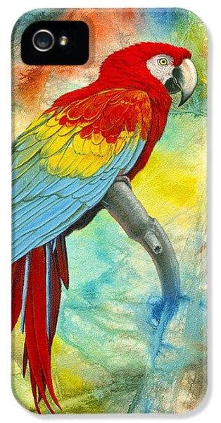 Scarlet Macaw In Abstract IPhone 5 Case by Paul Krapf