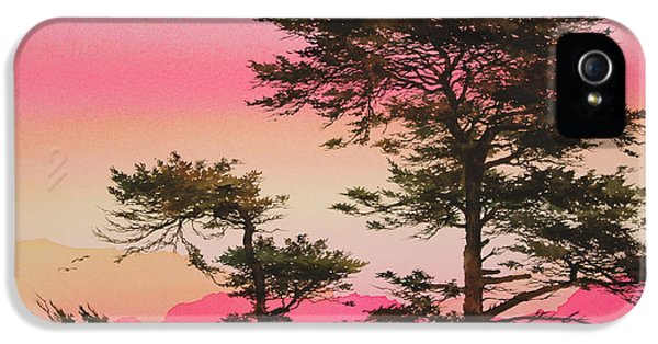 Scarlet Sunset Silhouettes IPhone 5 Case by James Williamson