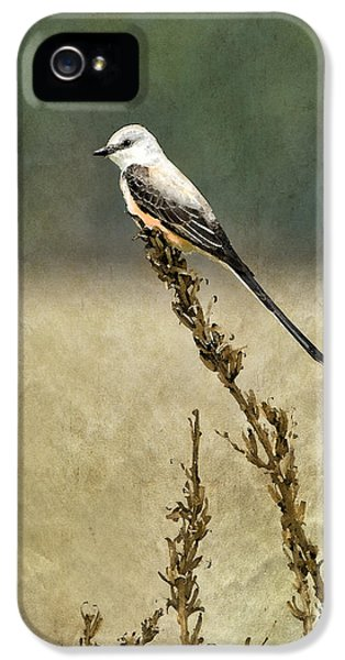 Scissortailed-flycatcher IPhone 5 Case