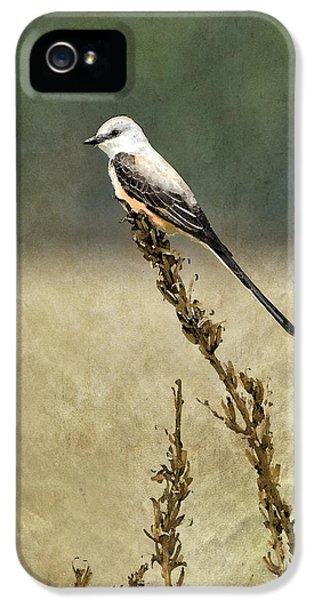 Scissortailed-flycatcher IPhone 5 / 5s Case by Betty LaRue