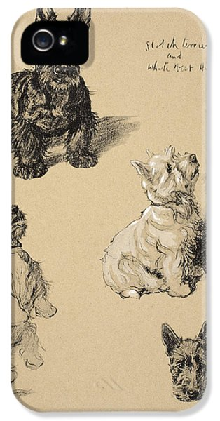 Scotch Terrier And White Westie IPhone 5 Case