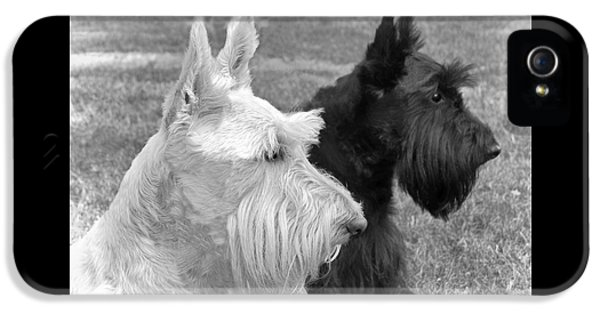 Scottish Terrier Dogs Black And White IPhone 5 Case