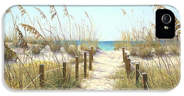 Sea Oat Path IPhone 5 Case by Laurie Hein