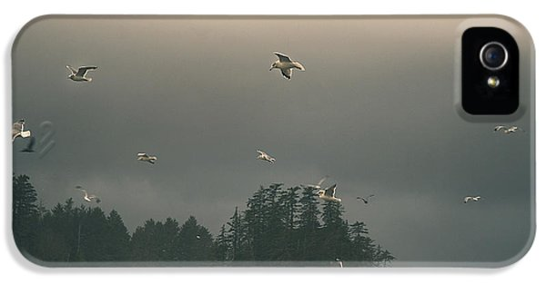 Seagulls In A Storm IPhone 5 Case