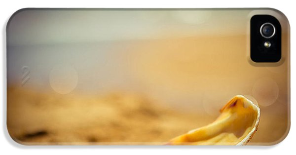 Detail iPhone 5 Case - Seashell  by Raimond Klavins