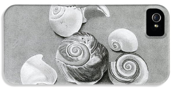 Seashells IPhone 5 Case by Sarah Batalka