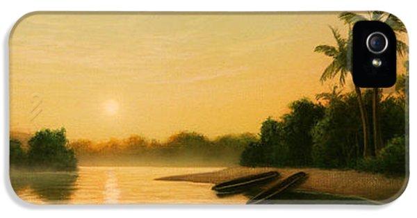 Seminole Sunset IPhone 5 Case