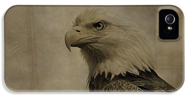 Sepia Bald Eagle Portrait IPhone 5 Case by Dan Sproul