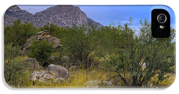 September Oasis No.1 IPhone 5 Case by Mark Myhaver