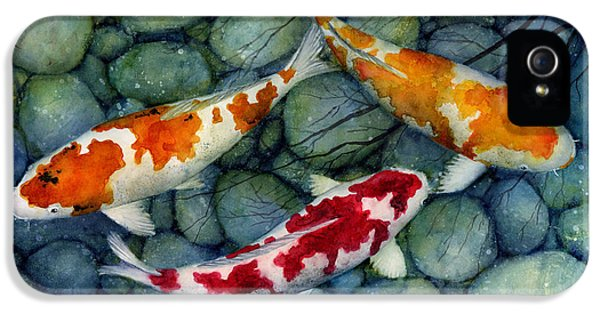 Koi iPhone 5 Case - Serenity Koi by Hailey E Herrera