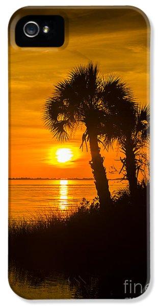 Settting Sun IPhone 5 Case