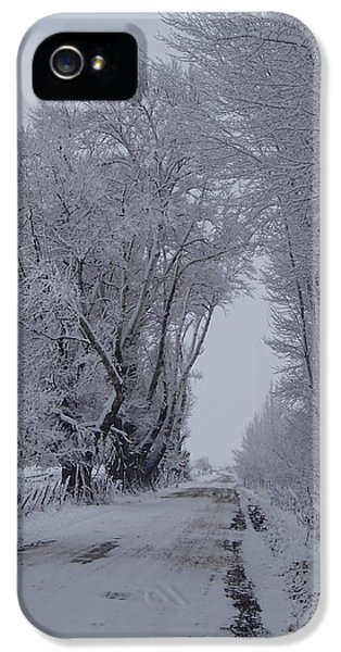 Shady Lane In Winter #3 IPhone 5 Case