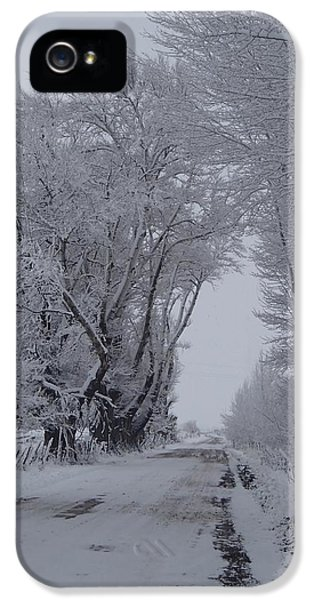 Shady Lane In Winter IPhone 5 Case