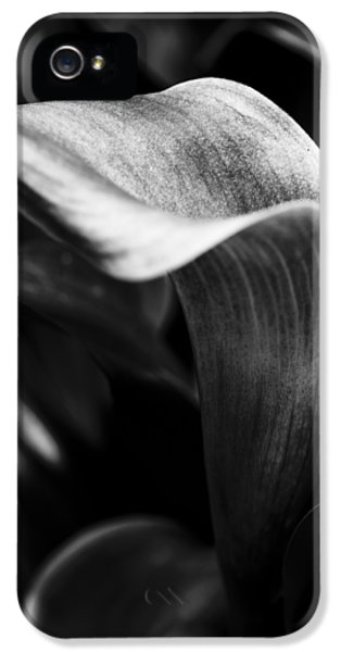 Shapely As A Lily IPhone 5 Case by Christi Kraft