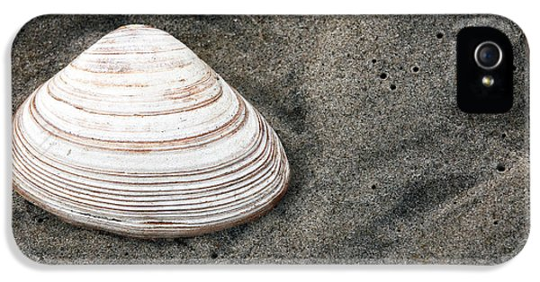 Shell In The Sand IPhone 5 Case by John Rizzuto