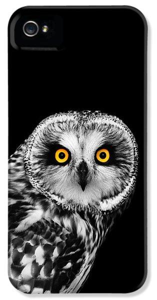 Short-eared Owl IPhone 5 Case